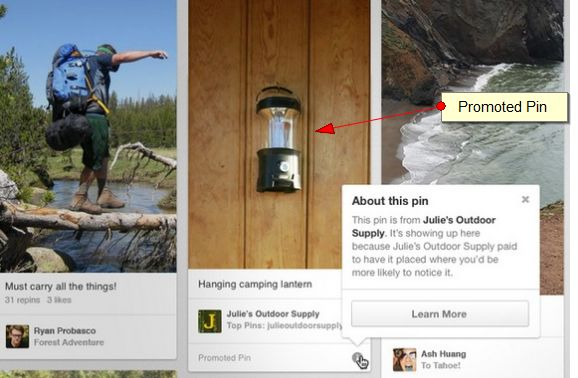 example of pinterest promoted pin